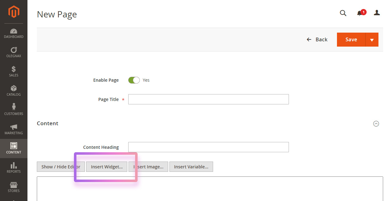 insert widget in page content in Magento 2